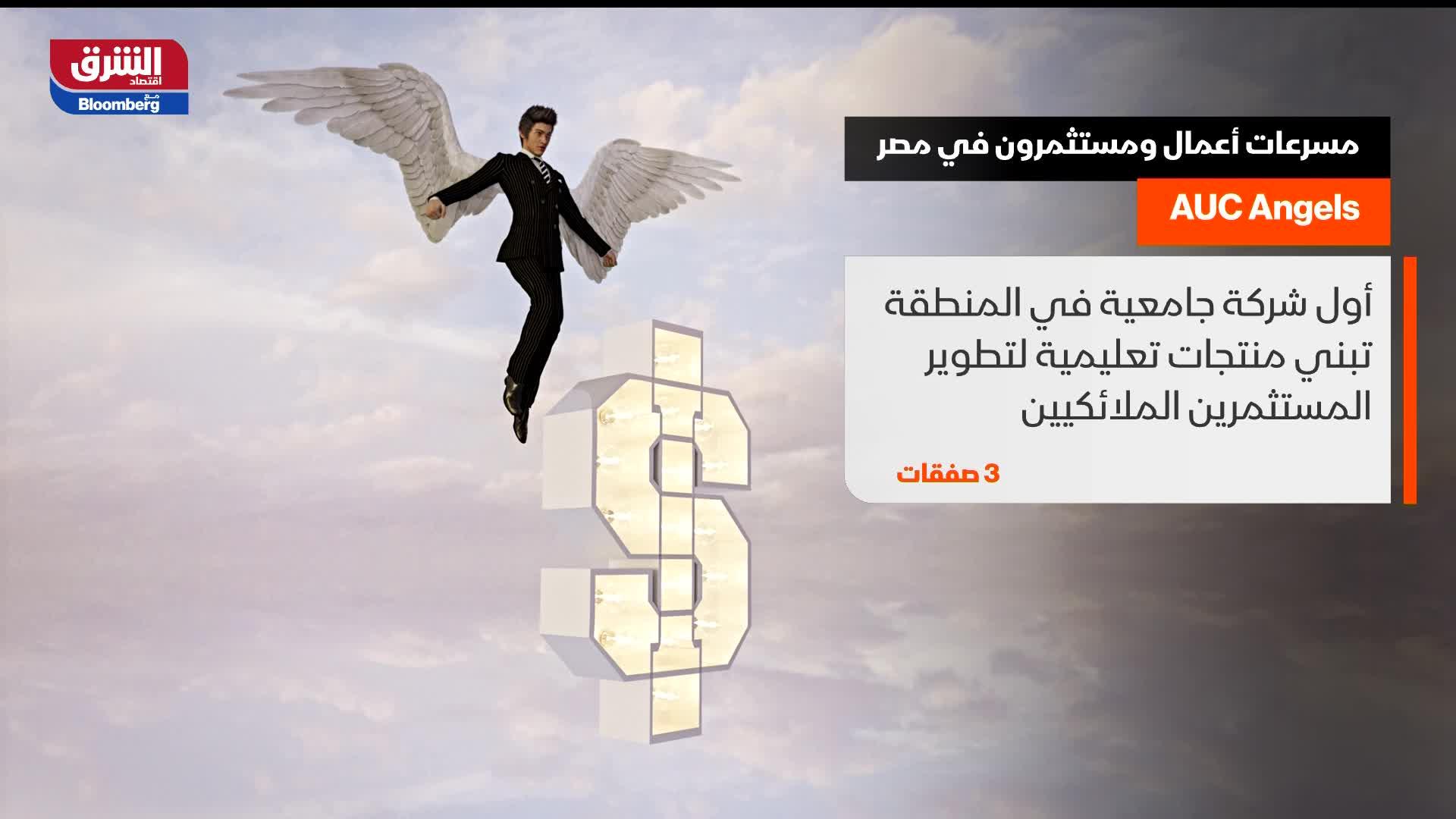 مسرعات أعمال ومستثمرون في مصر