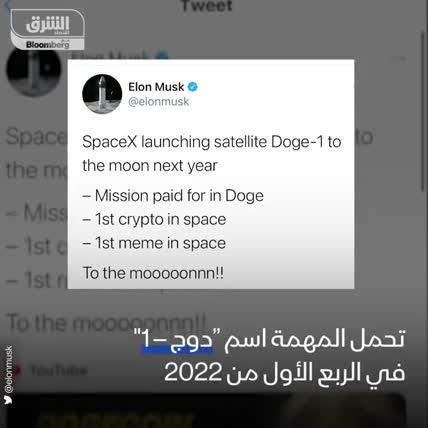 عملة دوج كوين بين الفضاء والهاوية
