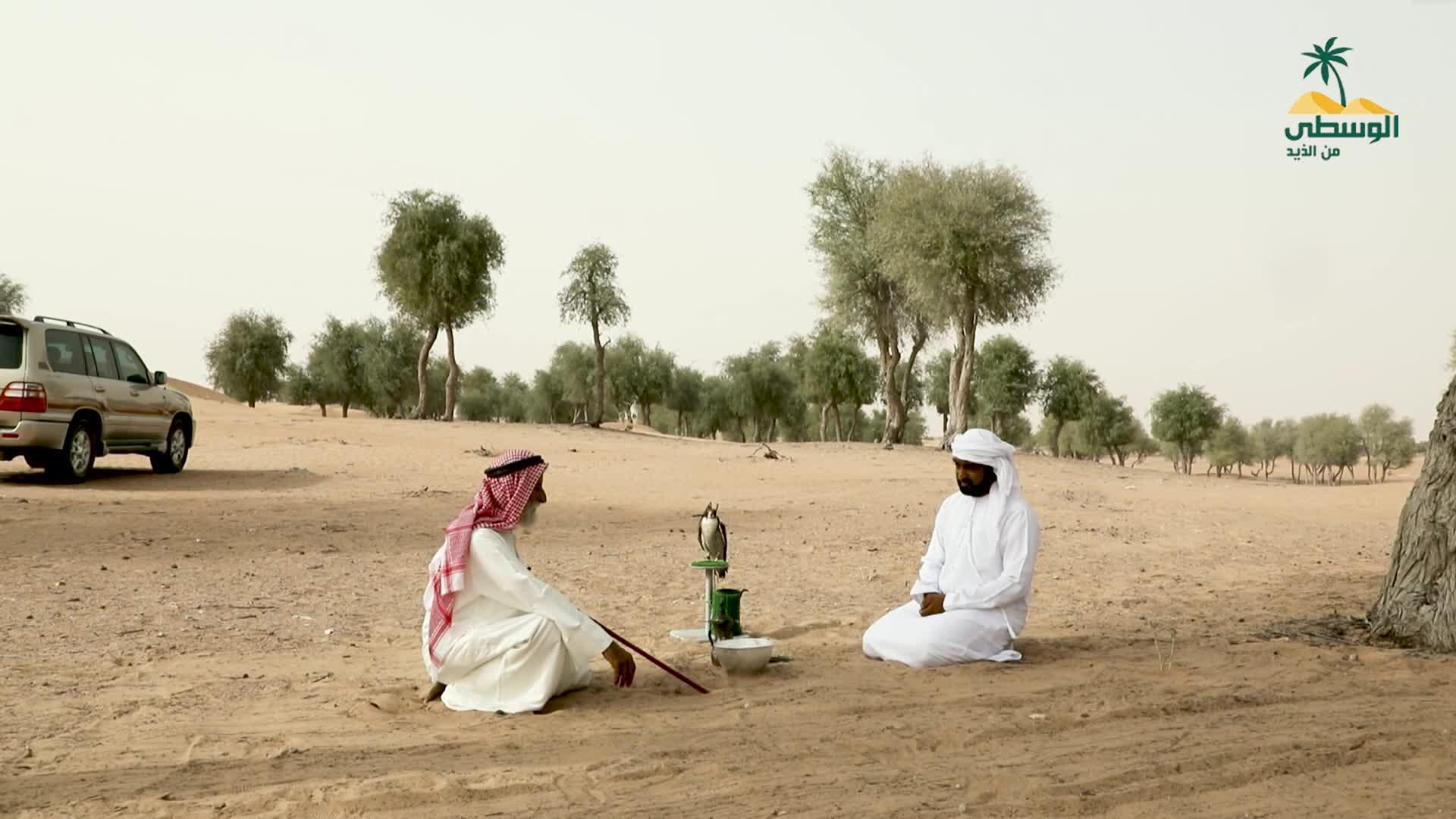 يوميات بدوي - الحلقة الثامنة