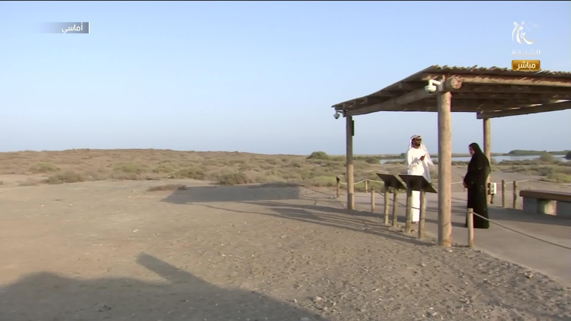مركز خور كلباء لأشجار القرم معلم فريد في أحضان الطبيعة